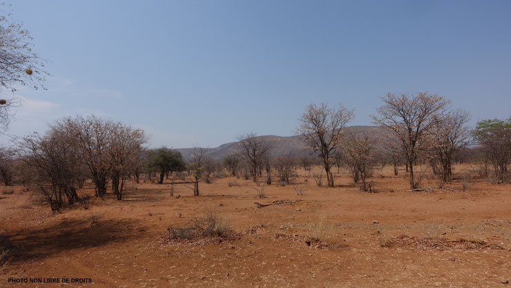Paysage du Kaokoland, Namibie
