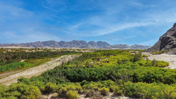 Piste désertique vers la rivière Hoanib, Namibie