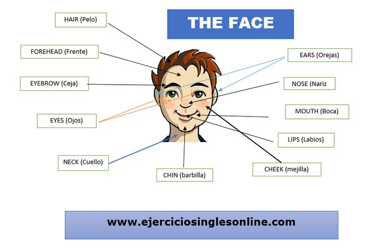 5 cms por segundo online dating 8