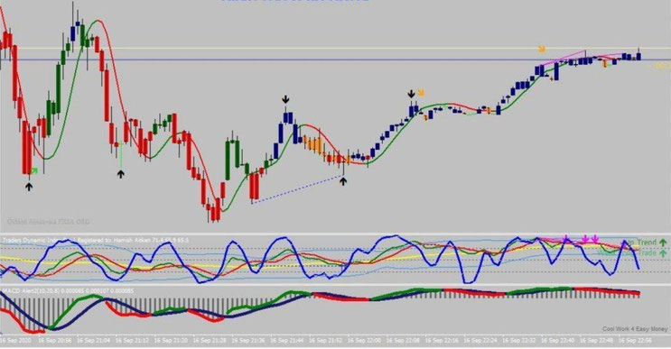 Alcon Forex System