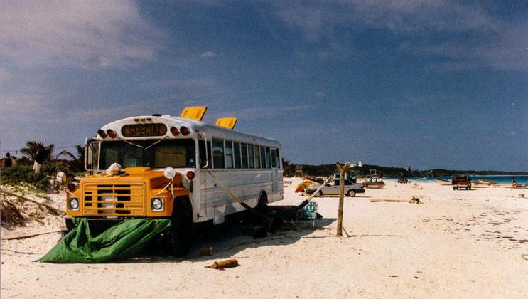 Nach langem Suchen fanden wir diesen alten Schulbus am Strand, der richtigen Bohnenkaffee und Apfelkuchen auf der Kuchenkarte bereithielt.