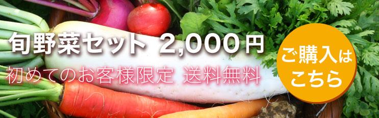 旬野菜セット2000円。初めてのお客様限定、送料無料。ご購入はこちら