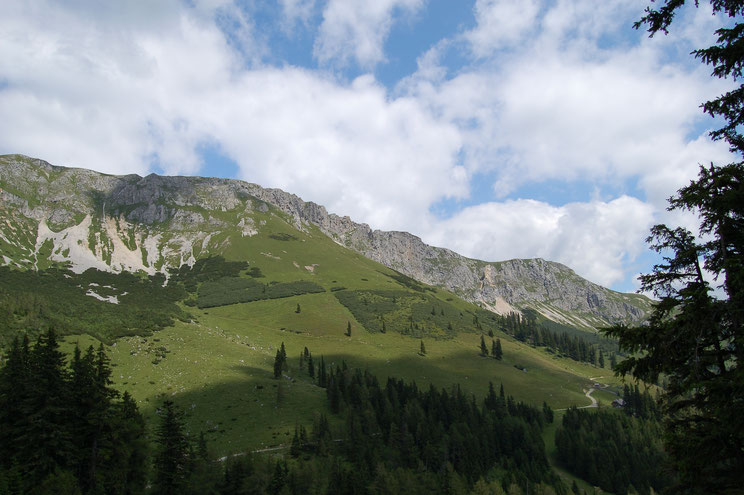 Brunnalm, Hohe Veitsch, Panoramaweg,