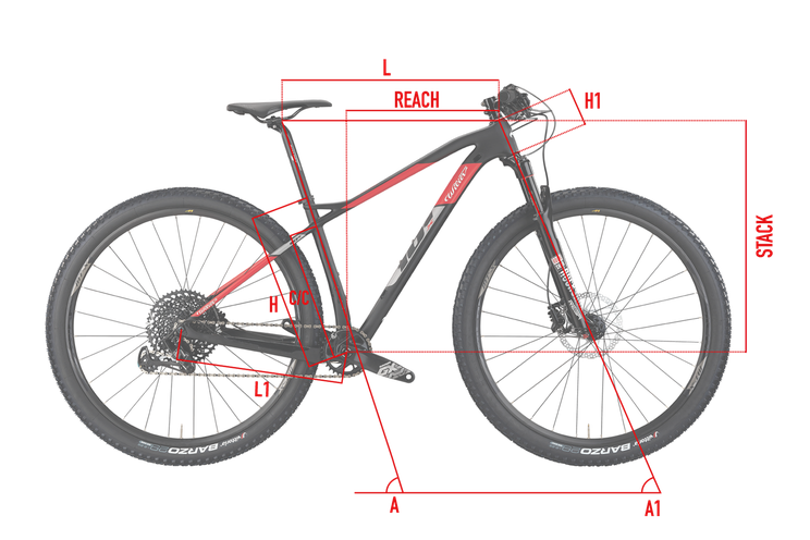 Wilier 101X Geometriew Italian Cycle Experience