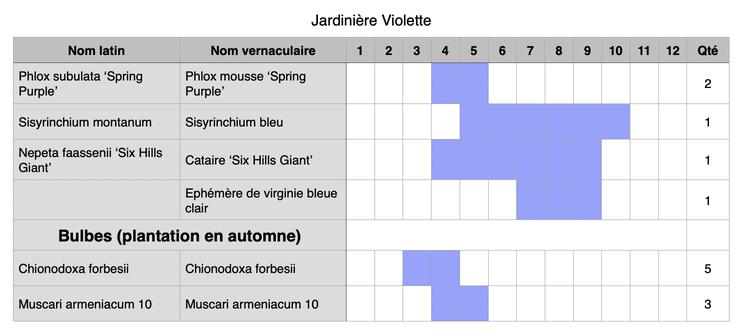Composition possible pour une jardinière de fleurs violettes