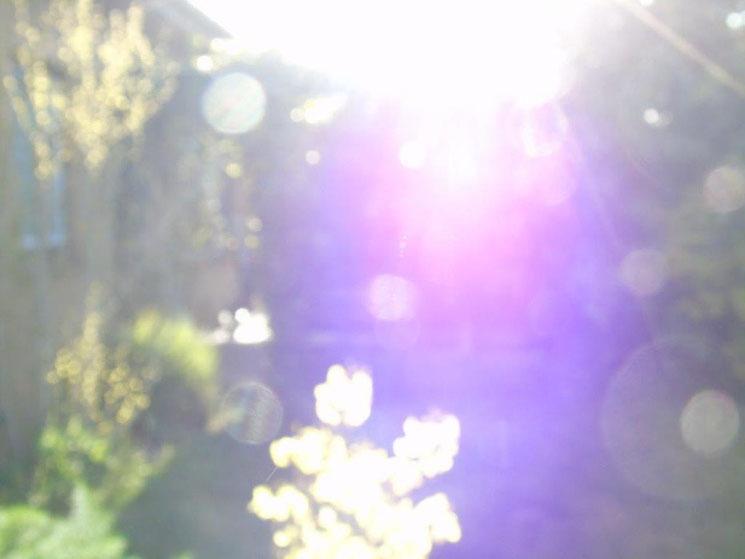Morgengruß die Zweite, Quelle: www.lichtwesenfotografie.com