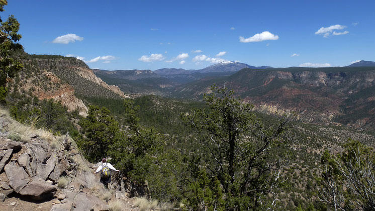 Jemez River canyon from Joan Delaplane Trail, Redondo Peak, Santa Fe National Forest, Jemez Mountains, New Mexico