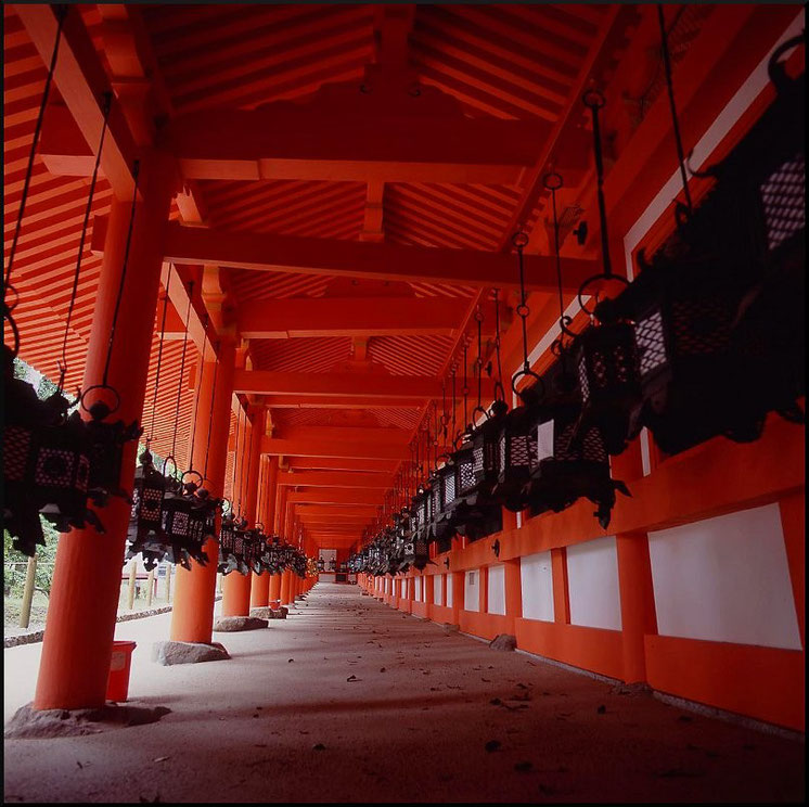 Kasuga-Taisha Schein, Nara