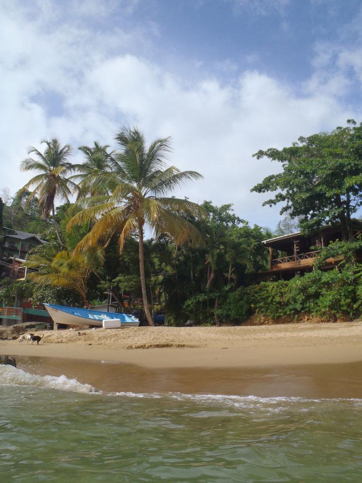 Workaway, Castara, Tobago