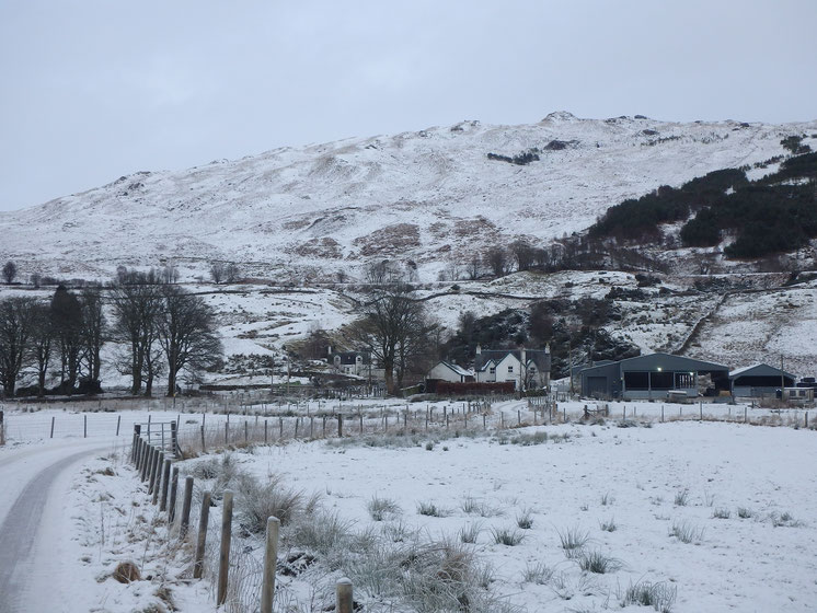 Snow on Kirkton Farm, West Highland Way in December