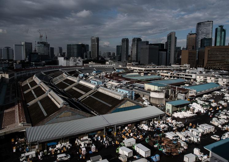 写真:築地市場を上から眺めた景色
