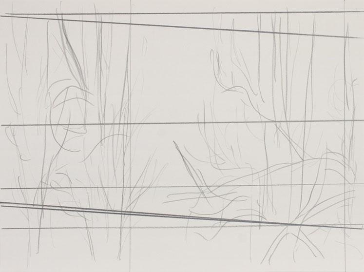 Bäume und Linien / 2016 / 32 x 24 cm / Bleistift auf Papier