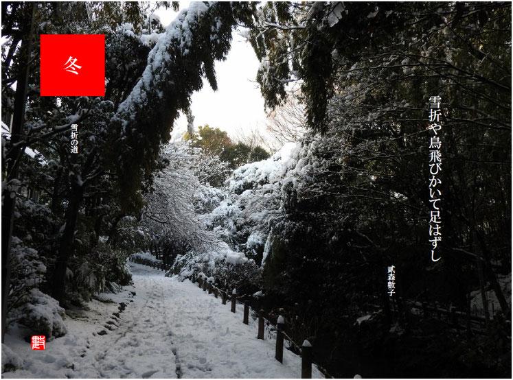 雪折や鳥飛びかいて足はずし 2018/02/04作句  雪の親水緑道で