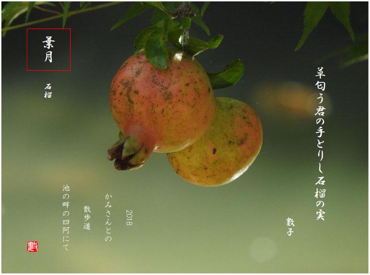 草匂う君の手とりし石榴の実 2018/08/24作句  180818親水公園にて撮影