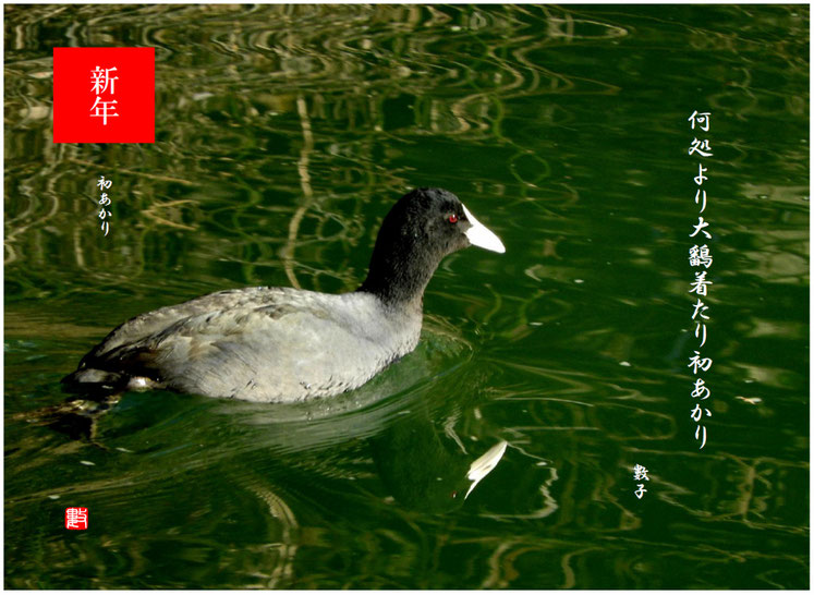 2021/01/02作句 散策路河川 2021/01/02撮影