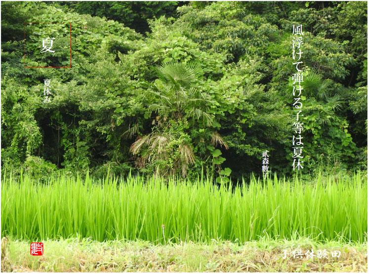 夏休(なつやすみ)2017/07/21作句