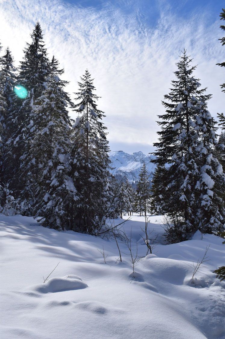 Winter snow, Morgins, Switzerland