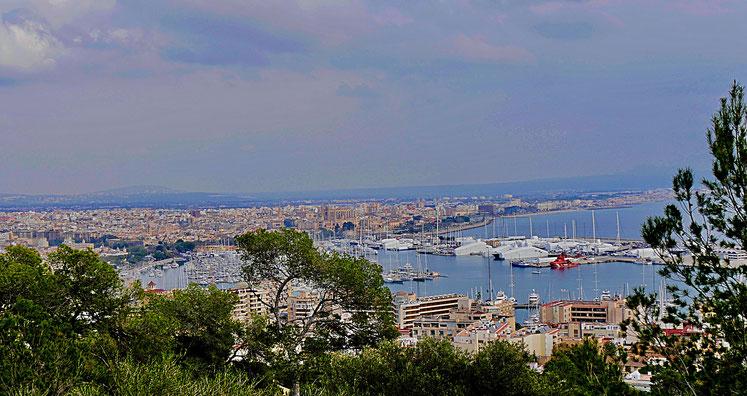 Blick auf Palma und den Hafen