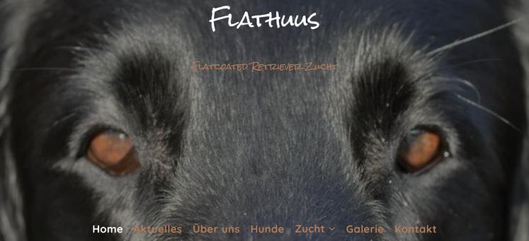 Flathuus, Flat-Coated Retriever Zucht