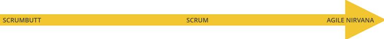 Vom SCRUMbutt über SCRUM bis zum Agile Nirvana