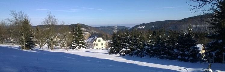 Die Wiese zwischen Bergstraße und Ritterstraße, im Hintergrund unser Haus