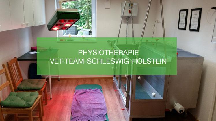 Physiotherapie Vet-Team-Schleswig-Holstein
