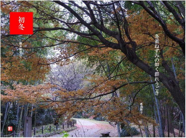 2017/12/12作句 散策路