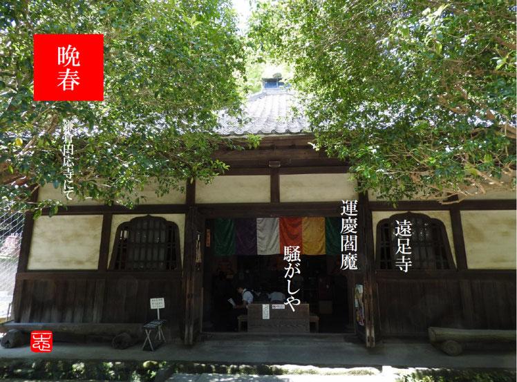 遠足(えんそく) 鎌倉円応寺 160602撮影