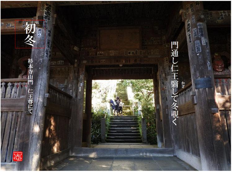 2016/12/08作句 鎌倉 杉本寺 161208撮影