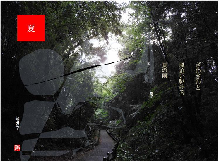 ざわざわと風追い駆ける夏の雨  夏の雨(なつのあめ)2018/08/08作句  親水緑道2018/07/29