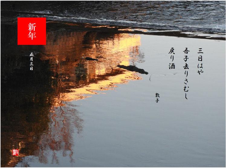 三日はや吾子去りさむし戻り酒 2019/01/02作句 散策路河川 2019/01/02撮影