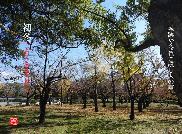 城跡や冬色こぼし人の声 2016/11/26作句 駿府城公園 161126撮影