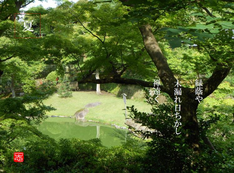 緑蔭や木漏れ日ちかし禅遠く  緑蔭(りょくいん)北鎌倉円覚寺 160620撮影
