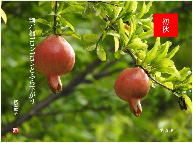 2017/09/06作句 散策路公園 石榴