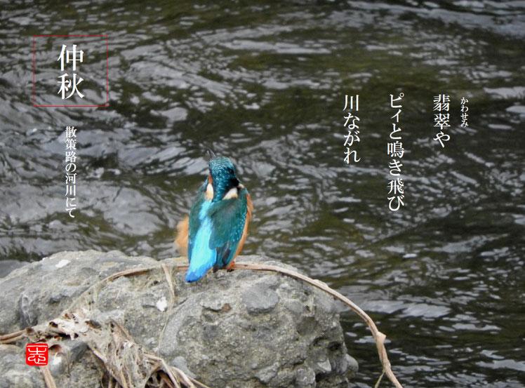 翡翠(かわせみ)散策路 2016/10/22作句 撮影