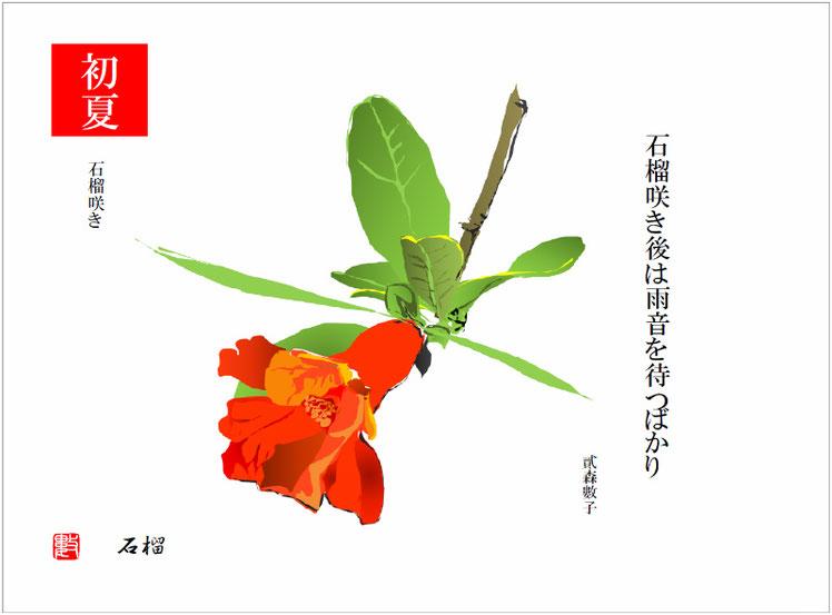 石榴(ざくろ)2017/06/13作句