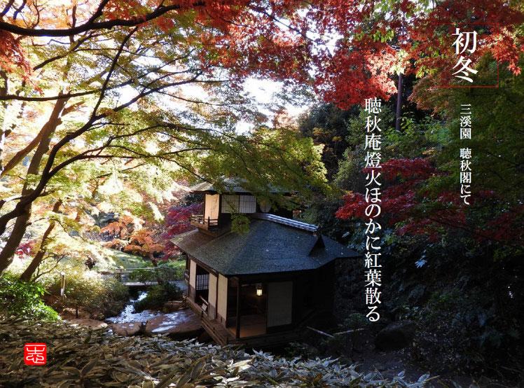 聴秋庵燈火ほのかに紅葉散る 2016/12/02作句 三溪園 161202撮影