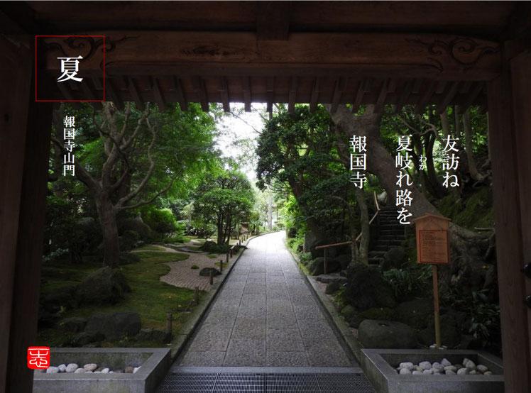 友(とも)鎌倉報国寺 2016/08/11作句 撮影