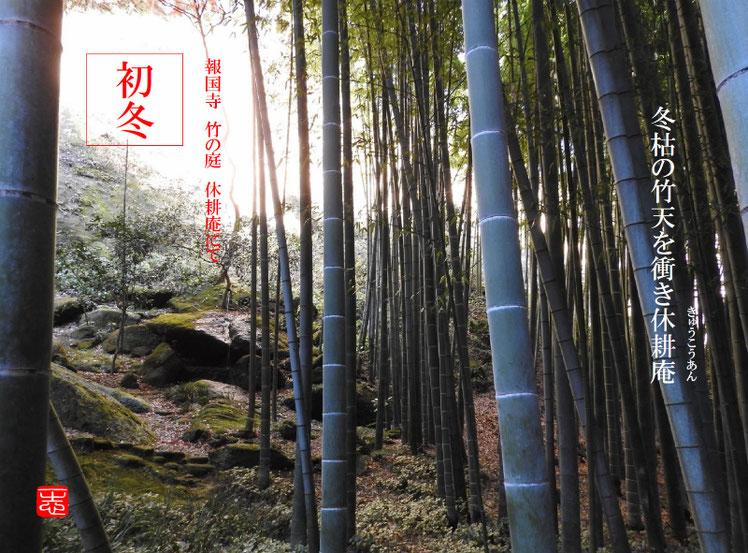 2016/12/08作句 報国寺 竹の庭 休耕庵 161208撮影