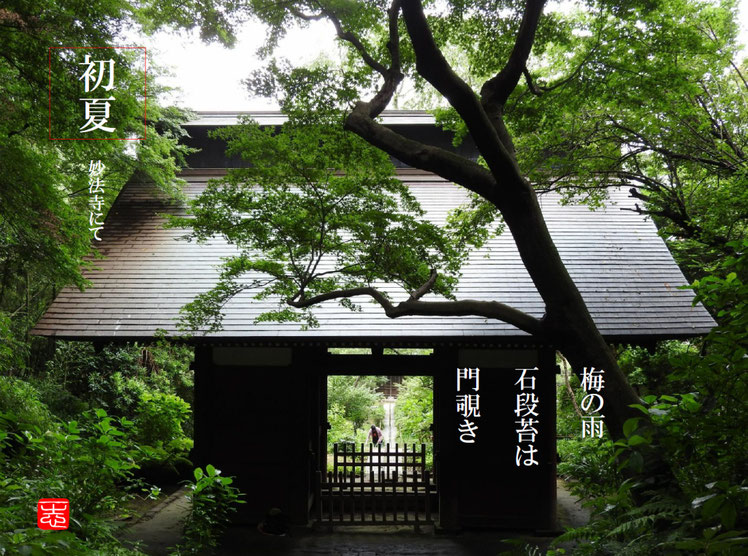 2016/06/16作句 鎌倉妙法寺 仁王門