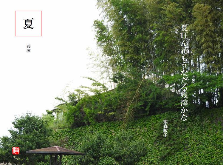 夏旺ん花もうなだる残滓かな   残滓(ざんし)2017/08/08作句