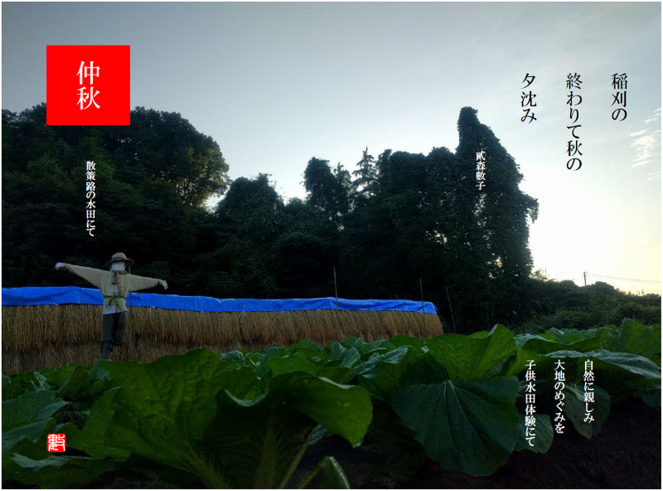 稲刈りの終わりて秋の夕沈み 2017/10/10作句 散策路