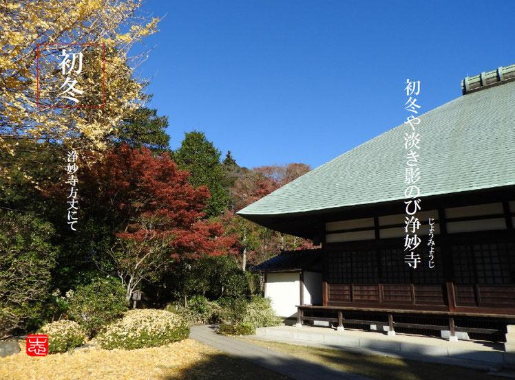 2016/12/08作句 鎌倉 浄妙寺 161208撮影