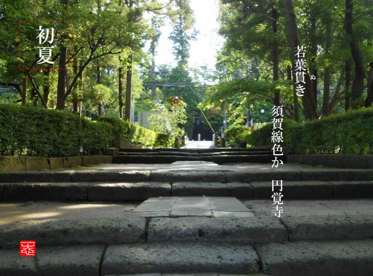 2016/06/20作句 北鎌倉 円覚寺