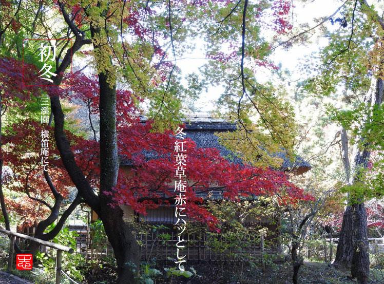 2016/12/02作句 三溪園 横笛庵 161202撮影