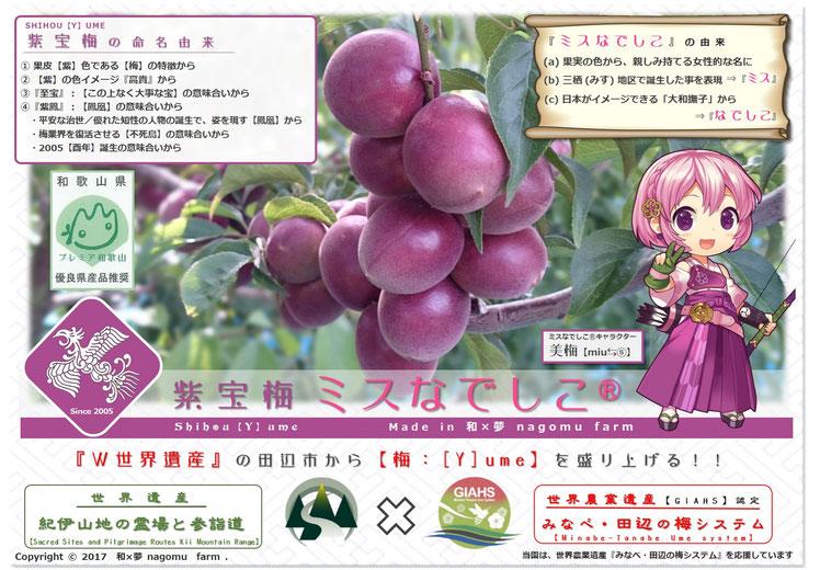 紫宝梅『ミスなでしこⓇ』発信POP 和×夢 nagomu farm