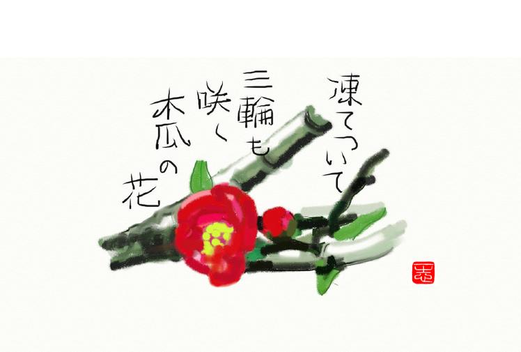 2017/01/20作句 俳画 木瓜の花