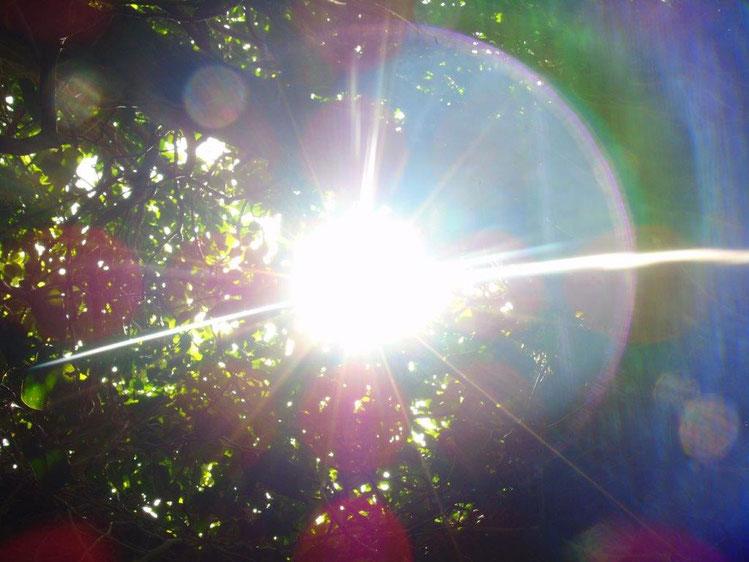 Lichtscheibe, Quelle: www.lichtwesenfotografie.com