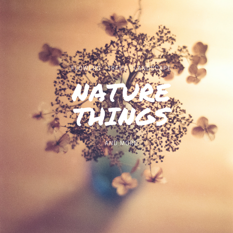 Nature Things