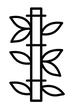 Figurtyp H ist auch bekannt als Bambus-Typ